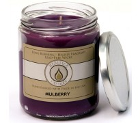 Mulberry Classic Jar Candle