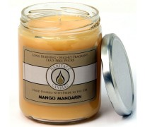 Mango Mandarin Classic Jar Candle