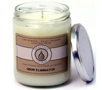 Odor Eliminator Classic Jar Candle